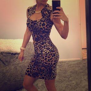 Cache Leopard dress